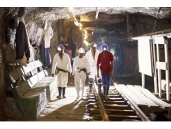 Savuka Gold Mine Jobs