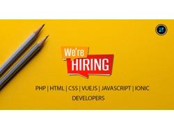 Intern Developer Wanted