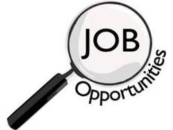 General worker s and driver s code 10-14 needed Mr Mofokeng on-(0725460128)