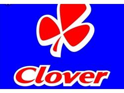 CLEANERS VACANCIES OPENING CLOVERHR0825190907