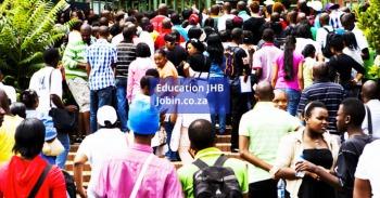 Levels of education in Johannesburg mini